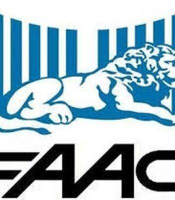 Автоматика для гаражных ворот FAAC (Фаак)